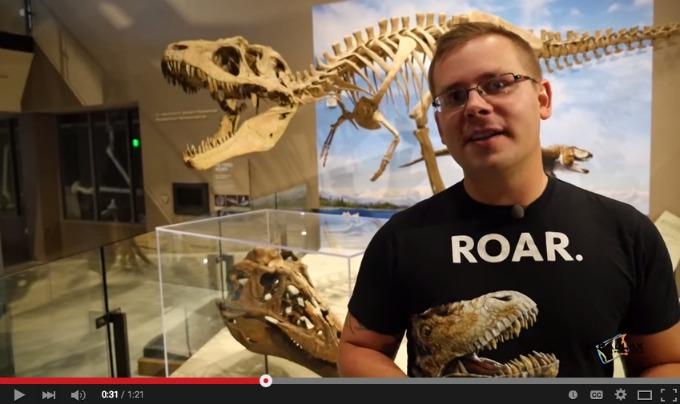 dinosaur video